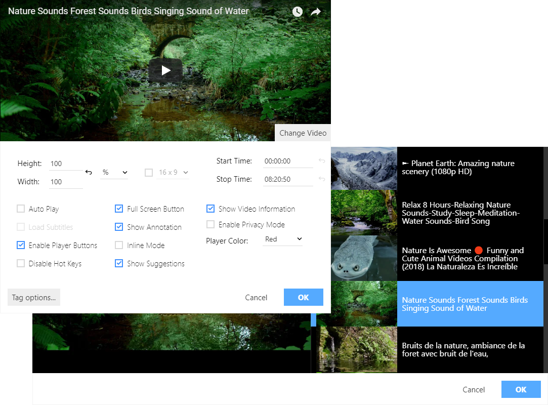 Youtube overview screenshot