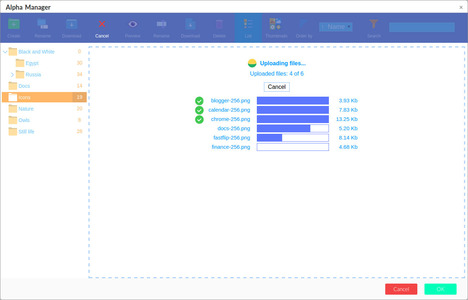 File Manager uploading screenshot